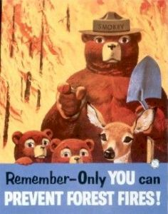 smokey the bear only you
