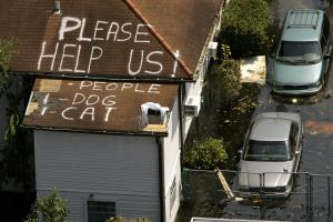A plea for help appears on the roof of a